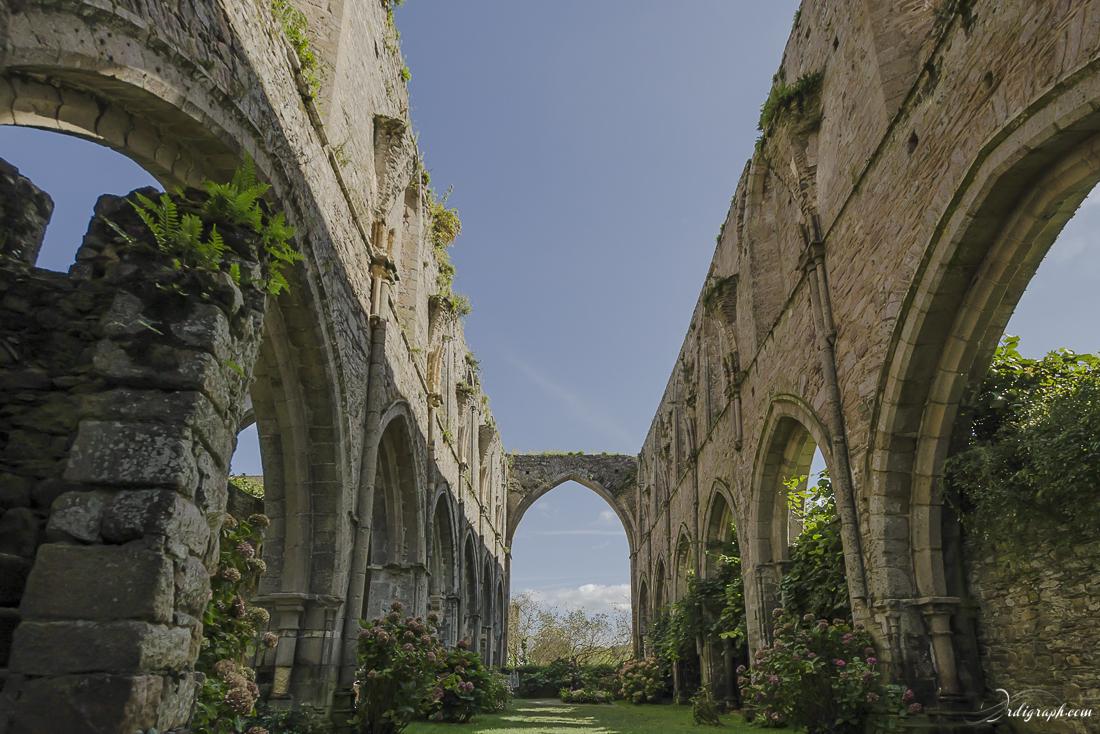 Abbaye de Paimpol-4
