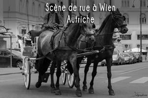 wien-scene-de-rue